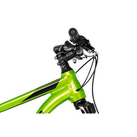 """Cannondale Trail 7 29"""" AGR"""